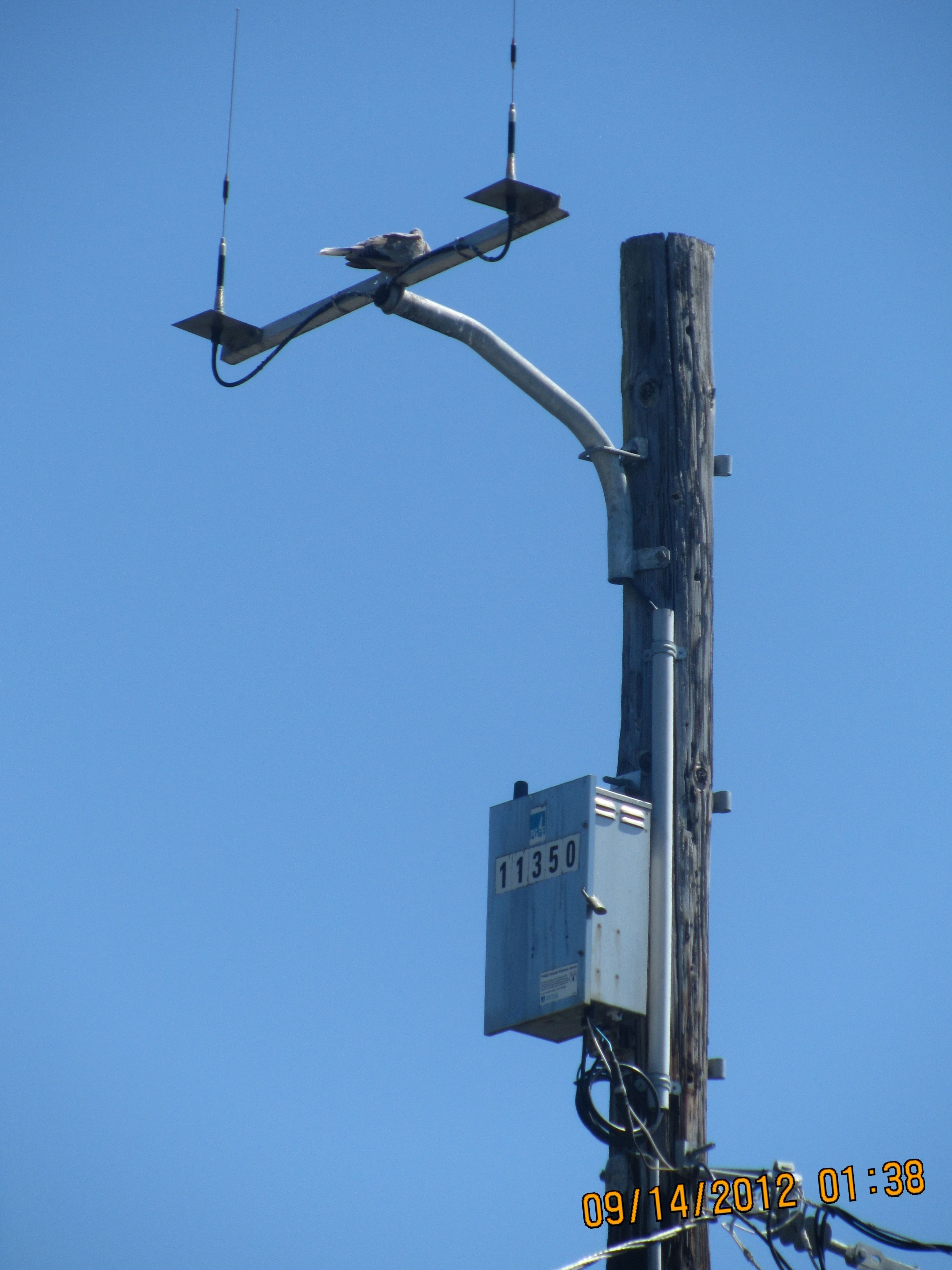 Smart Meter Infrastructure Emf Safety Network