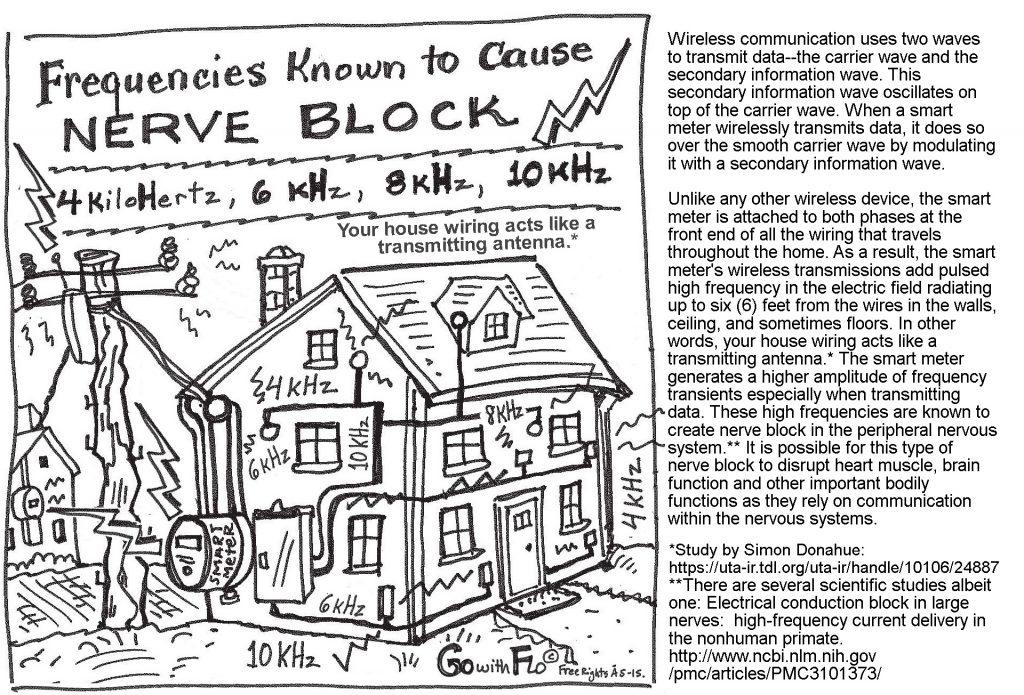 nerve-block-frequenciesrev1