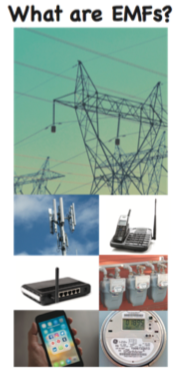 What Are EMFs? Brochure